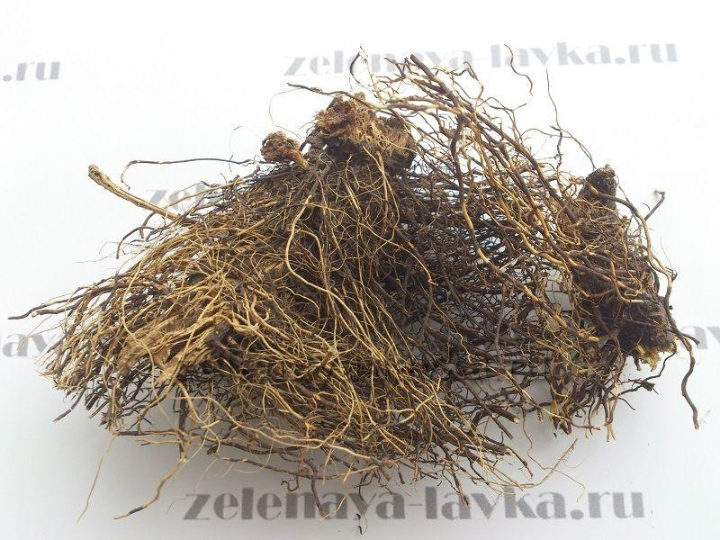 настойка маральего корня